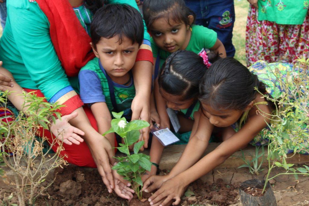 Plantation Day Celebration